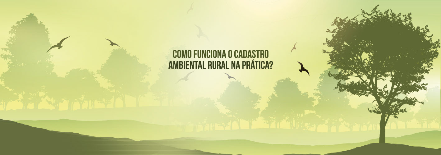 Ambiental-Rural-SITE
