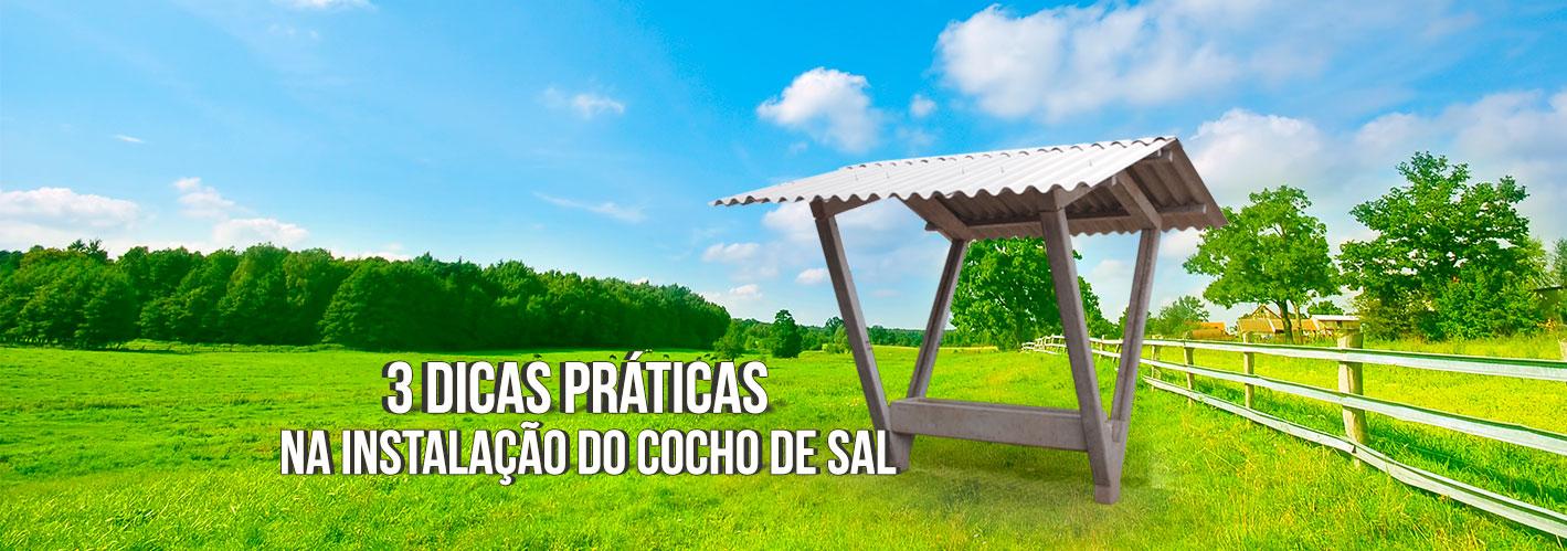 3-dicas-práticas-do-cocho-de-sal