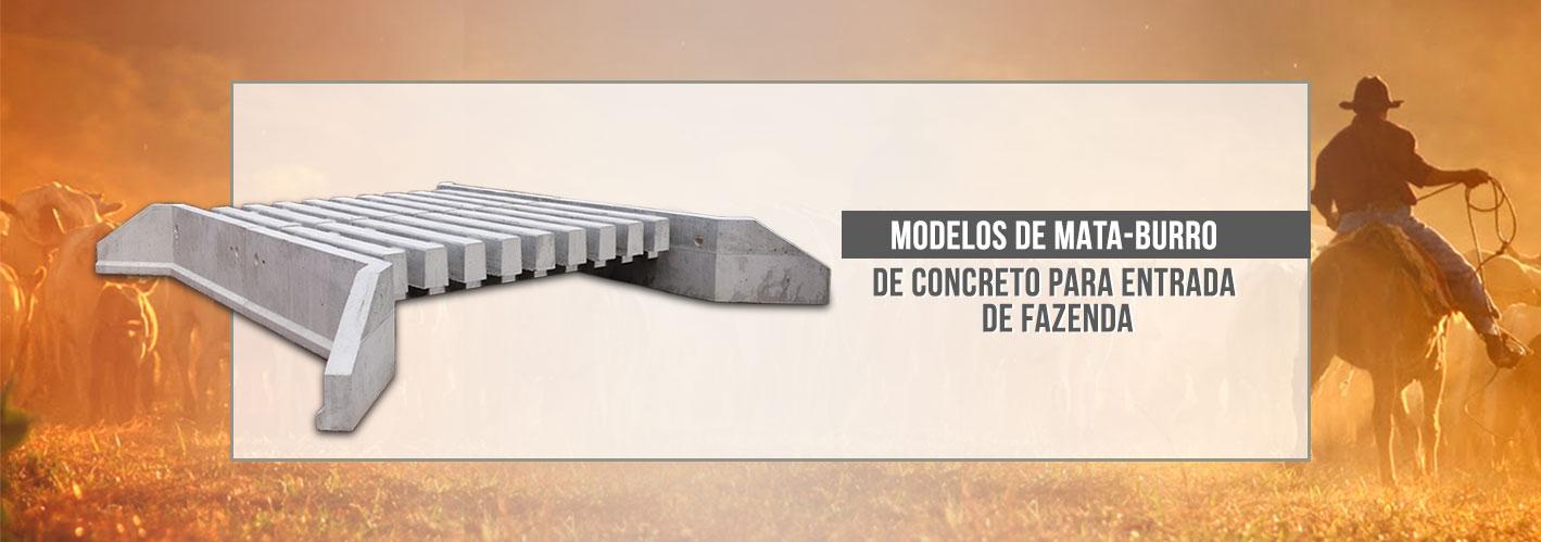 Modelos-de-mata-burro-de-concreto-para-entrada-de-fazenda